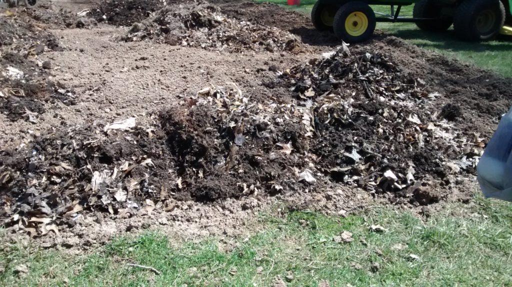 Rich, dark soil - make our veggies grow!
