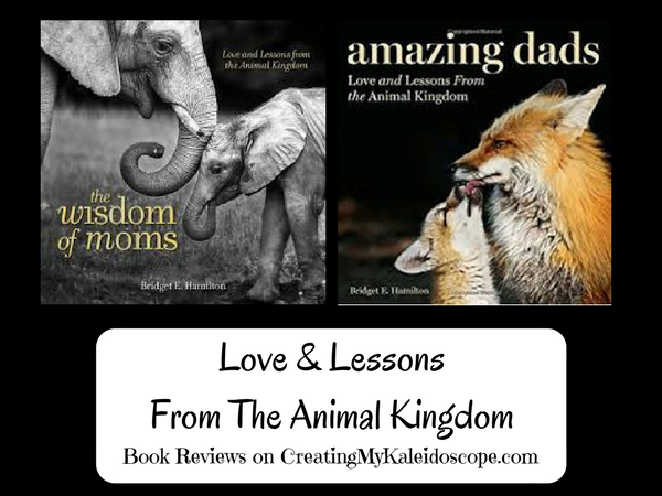 Love & Lessons From The Animal Kingdom